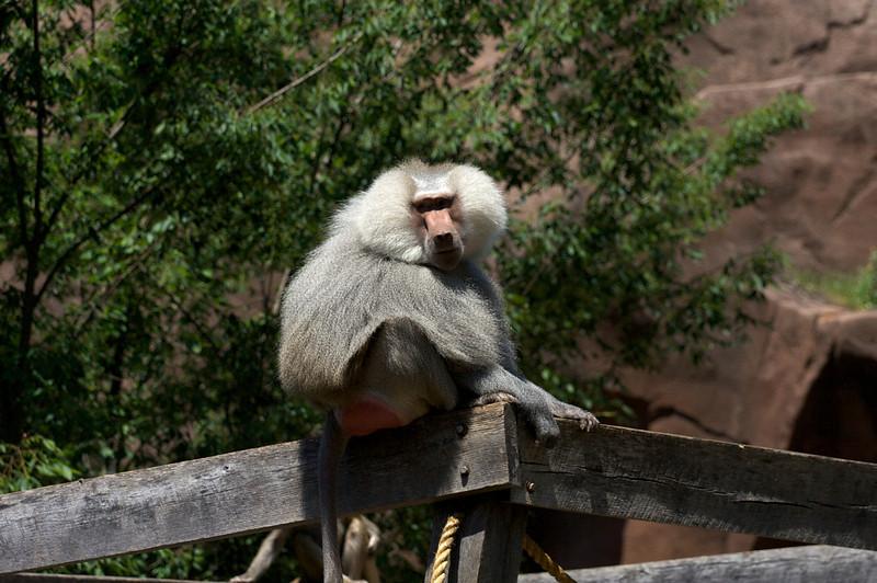 Zoo_Trip_19.jpg