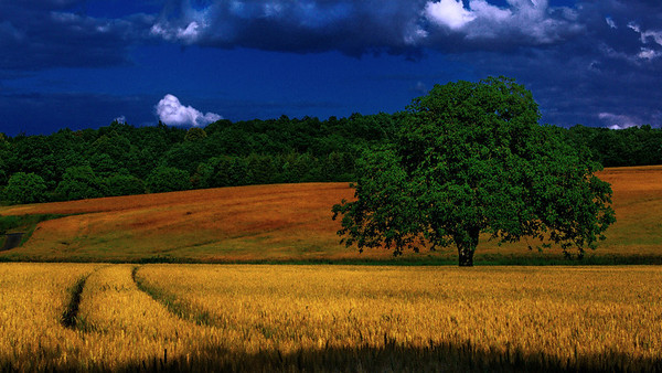 French landscapes