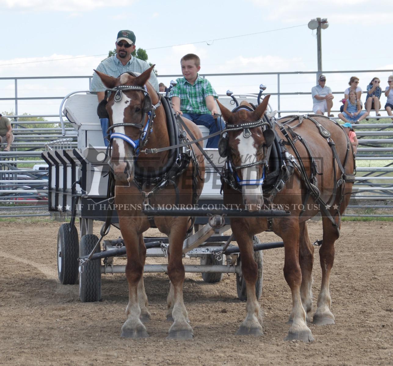 2017 Monroe County Fair Equestrian