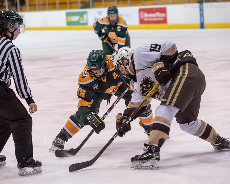 Hockey UofA Pandas vs UofM Bisions