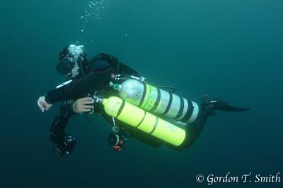 UAE Diving 2016