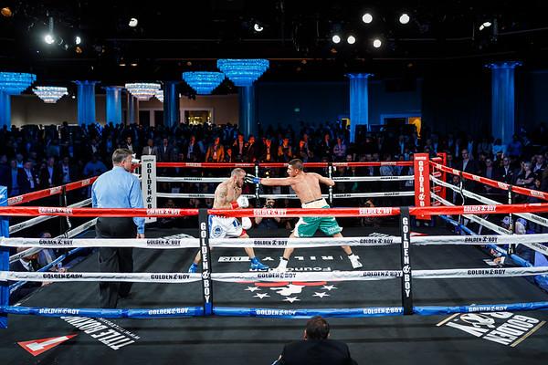 2019 Charity Boxing Night Decor