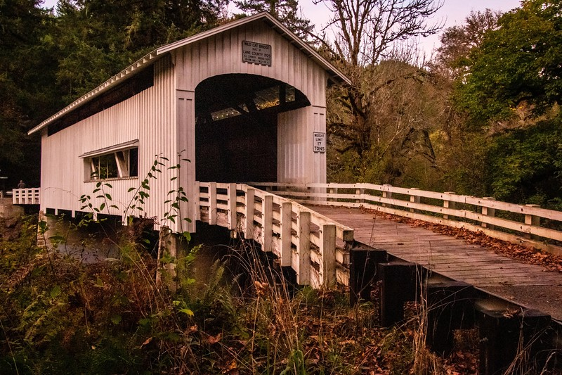 Wild Cat Covered Bridge-9365.jpg