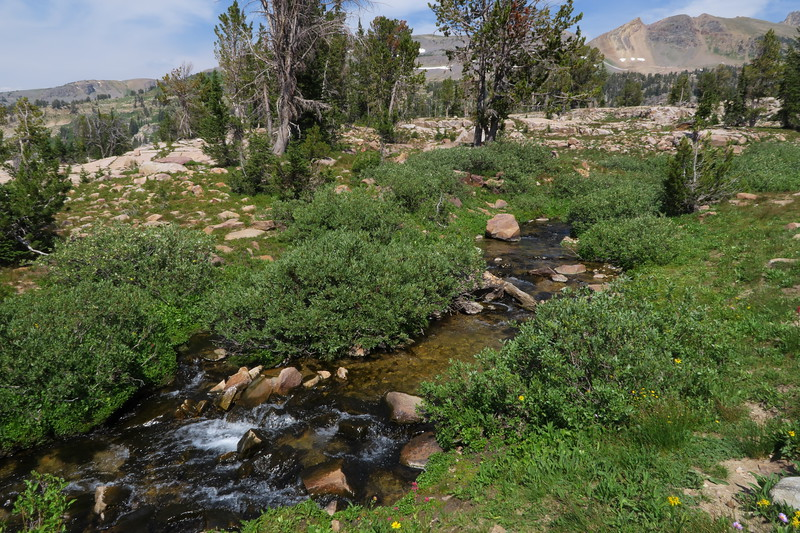 Upper Teton Creek - Alaska Basin