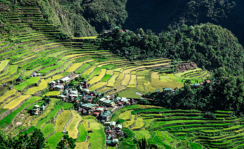 The Batad Rice Terraces of Northern Luzon