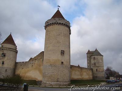 Le Château-Fort de Blandy Les Tours