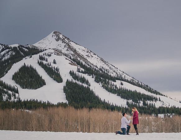 Alex & Stephanie Proposal