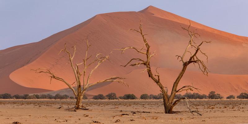 Namibia 69A4764.jpg