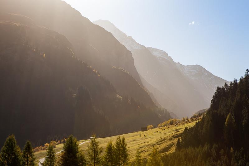Herbst-im-Rheinwald-D-Aebli-015.jpg