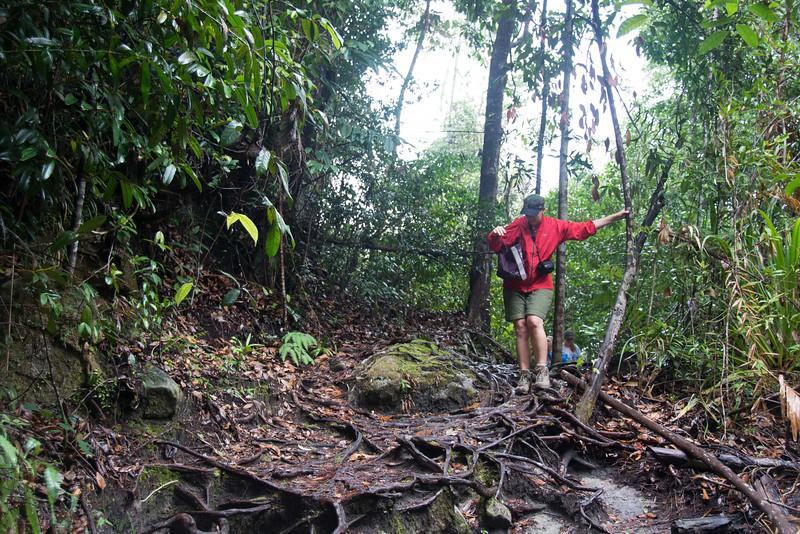 Borneo-2014-121.jpg