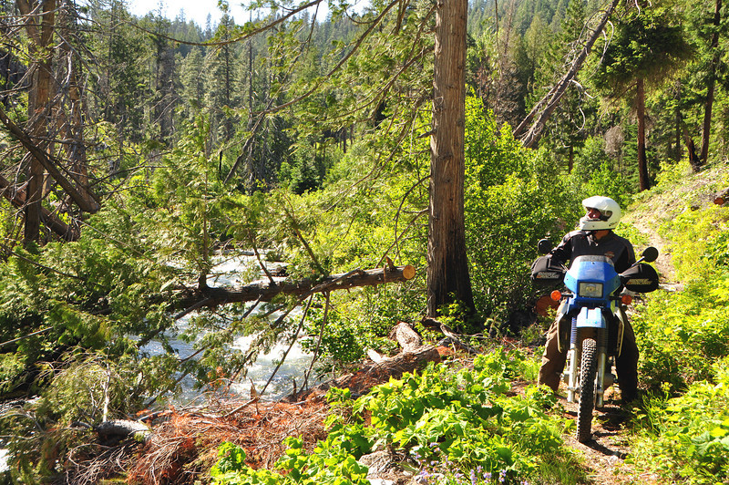 After returning from the GPS ride, Bill, Rob and I rode several miles north and dropped into the Mad River single track trail.  Lan had done it earlier in the week on his 400.