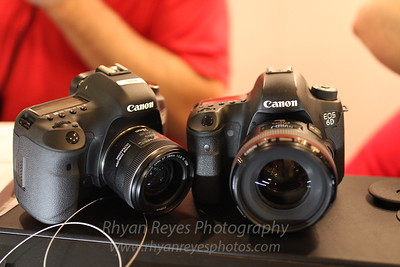 Canon 35mm L II Lens Sample Photos