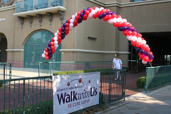 2008 Dallas Walk Photos