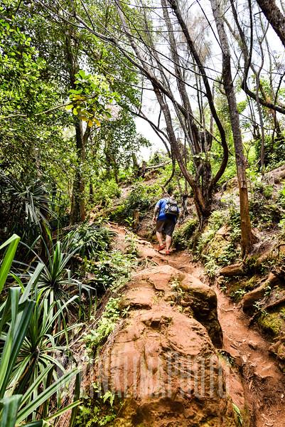 Kauai2017-260.jpg
