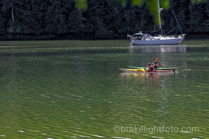Kayakers on Tod Inlet