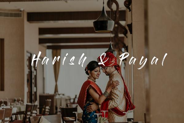 Harish & Payal
