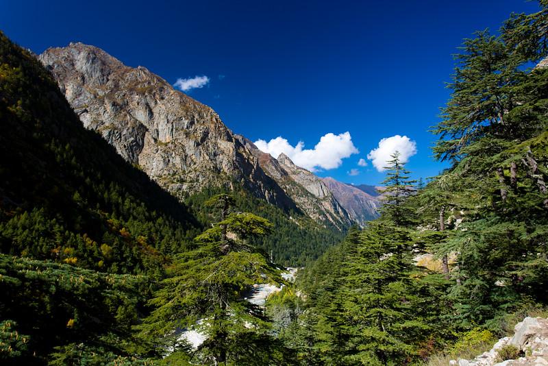 Himalayas 220.jpg
