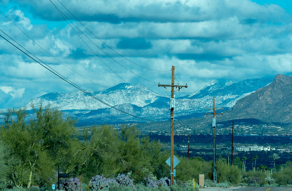 Catalina Mountains, on the East side of Tucson