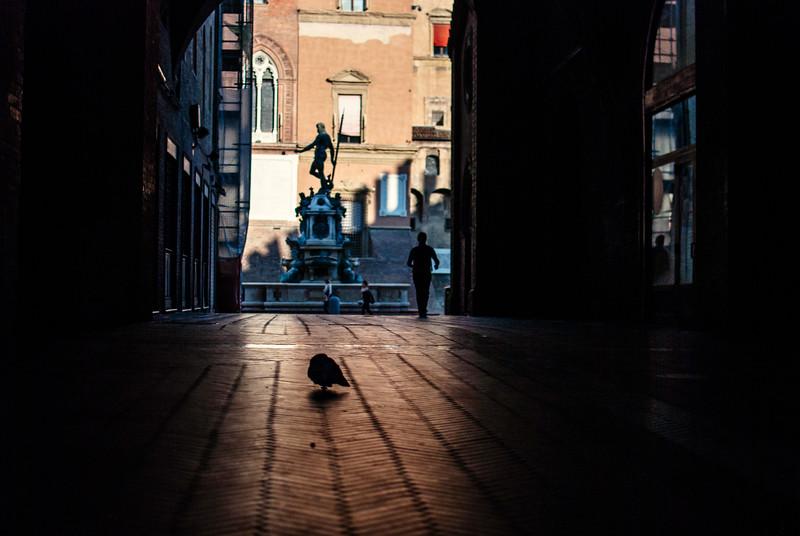 bologna courtyard morning man walking bird forward.jpg