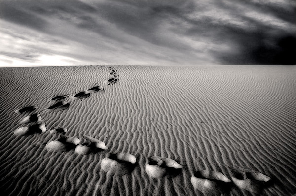 Long Way Home* desert, footprints, Death Valley, b/w