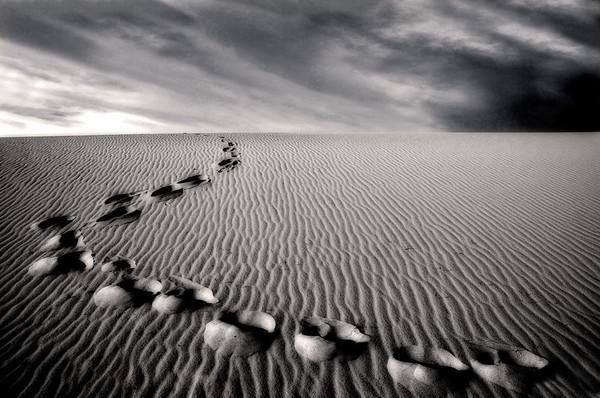 Long Way Home* desert, footprints, Death Valley, b/w