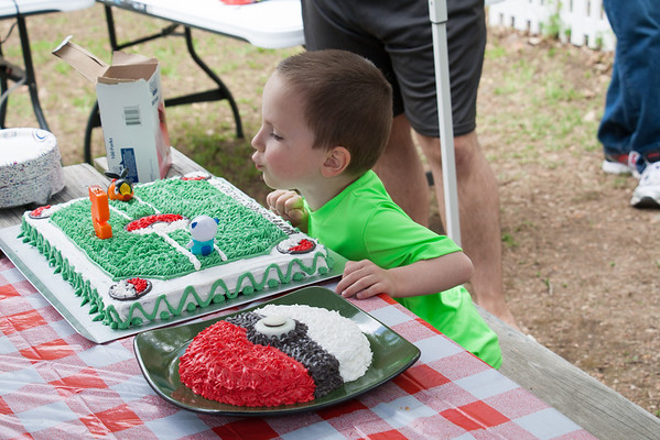 Linc's 5th Birthday Party