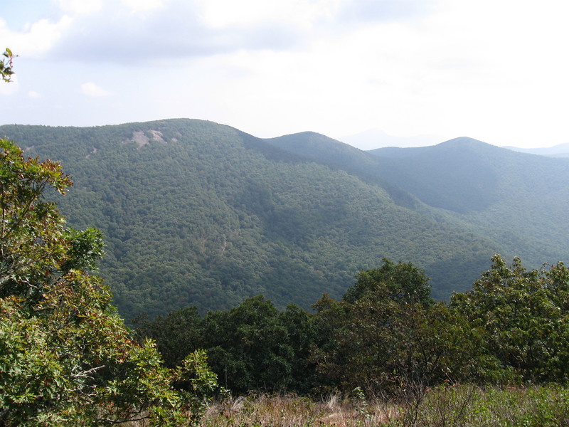 A view east from Wolf Laurel Top.