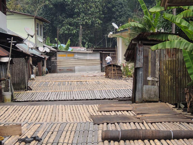 Borneo-2014-2.jpg