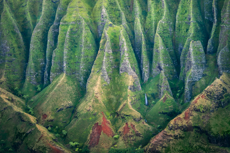 Hawaii Prints