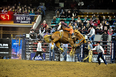 National Western Stock Show - 2020