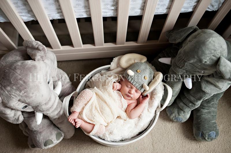 Hillary_Ferguson_Photography_Carlynn_Newborn019.jpg