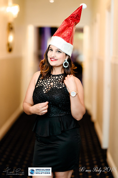 Specialised Solutions Xmas Party 2018 - Web (35 of 315)_final.jpg