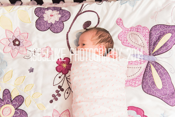 Shayla Moss Newborn