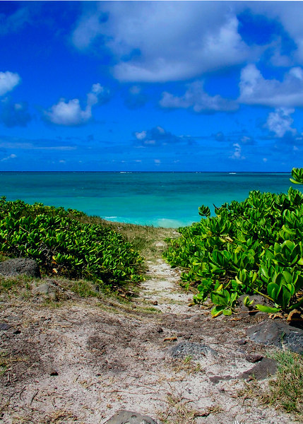 Soft Sandy Path to the bright turquoise waters of Waimanalo Beach