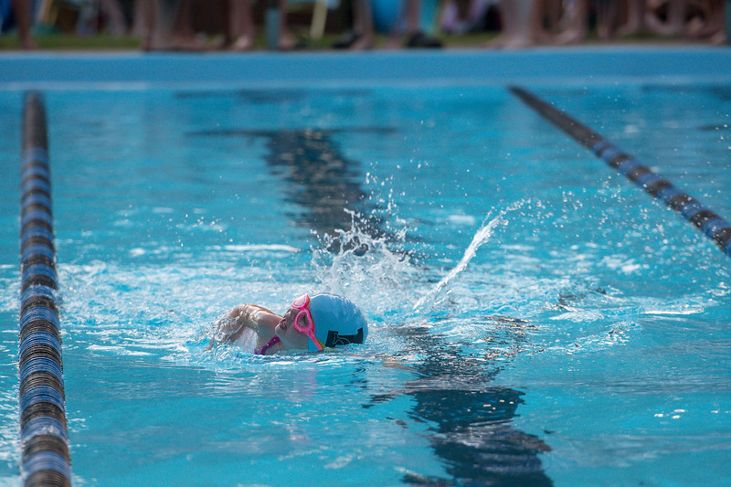lcs_swimming_kevkramerphoto-702.jpg
