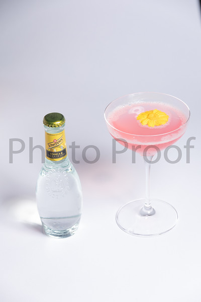 BIRDSONG Schweppes Cocktails 096.jpg
