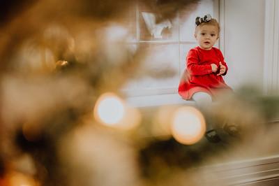 Killian Family Christmas Mini