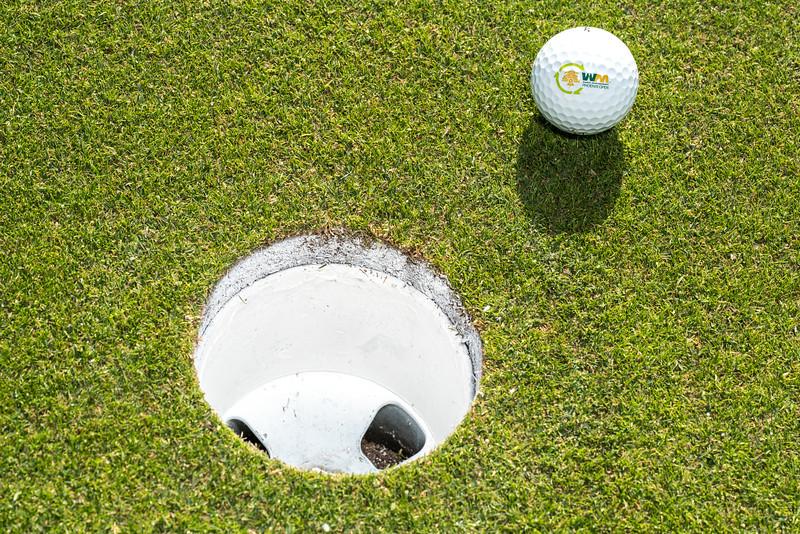 WM Phx Open Ball-20.jpg
