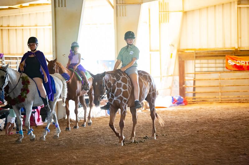 HorseCostume-21.jpg