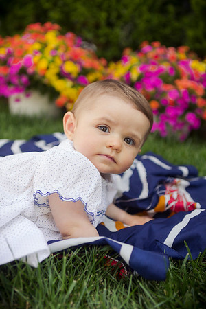 Baby Daphne