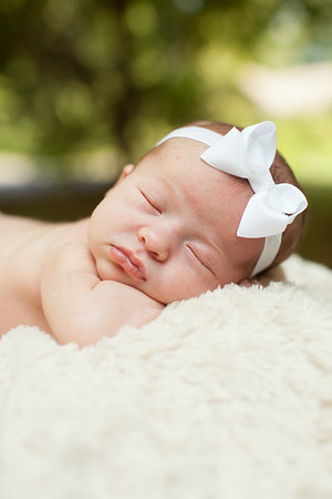 Lily at 11 Days | Born July 24, 2014