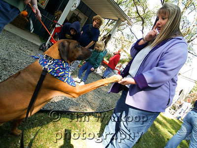 Helping Hands for Hounds