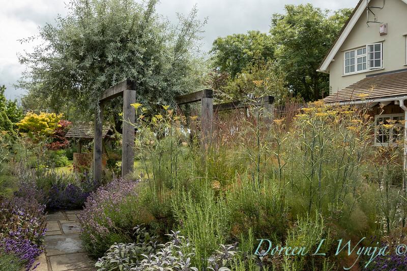 Beechleigh Garden - Jacky O'Leary garden designer_2981.jpg