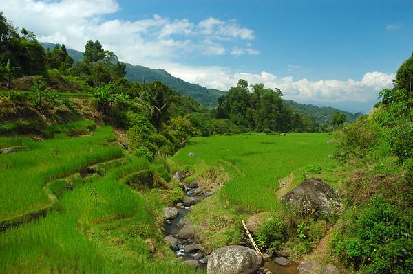 Batutumonga & Highlands