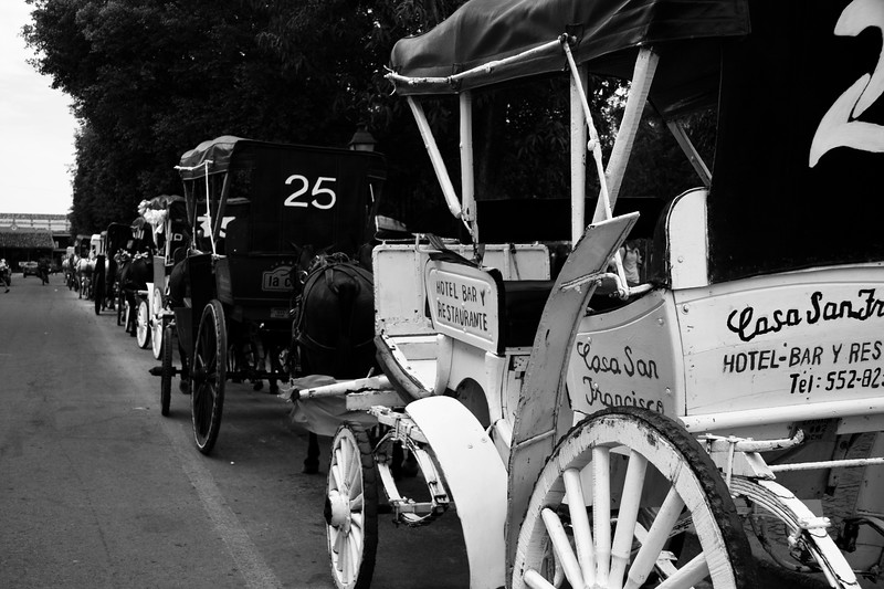 line-of-horse-drawn-carriages_4669515206_o.jpg