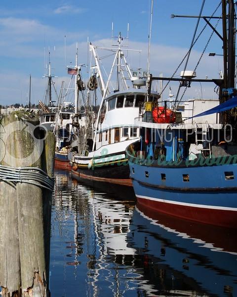Fishing Boats_batch_batch.jpg