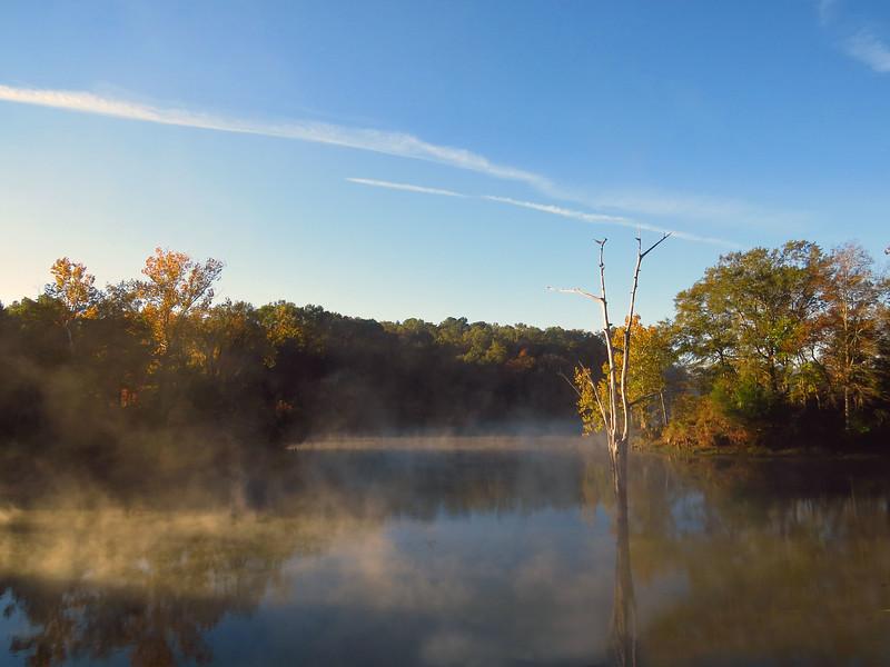 Foscue Creek Park, Tombigbee River, Demopolis, ALabama (18).JPG