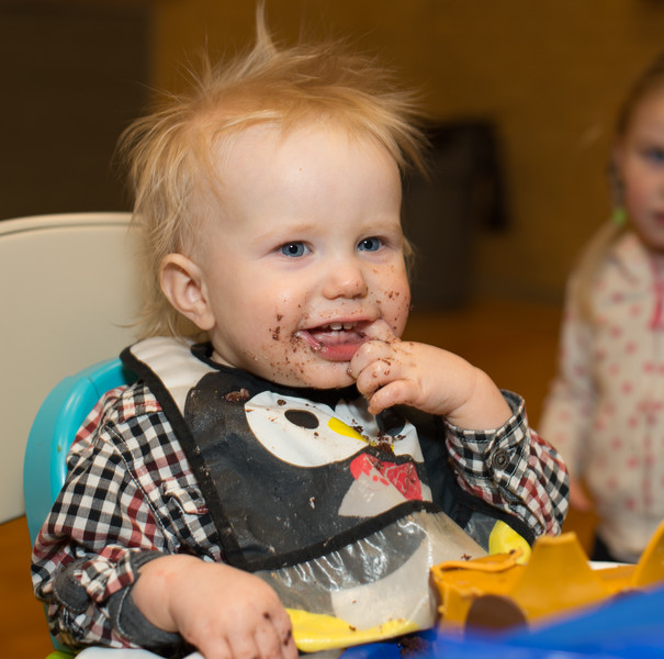 GB1_1377 20150227 Merek 1st Birthday.jpg