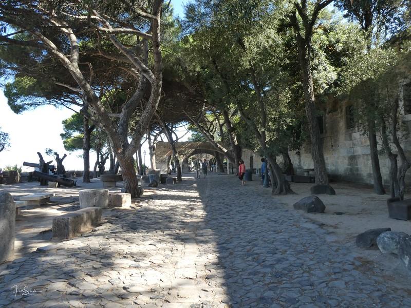 Lisbon August 19 -105.jpg