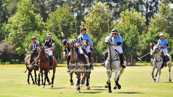 Sydney Polo Club 28th February, 2016